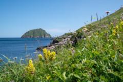 Semidi Islands