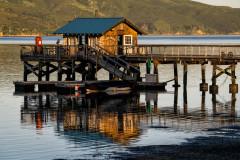 Nick's Cove Boathouse