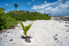 Tahanea Atoll